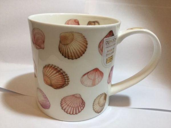 Shells (Muscheln)